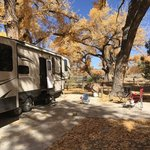 Cottonwood campground navajo lake sp