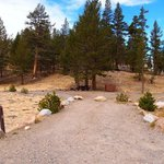 Junction campground inyo nf