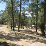 Pine ridge rv campground ruidoso nm