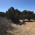 Rancheros de santa fe campground