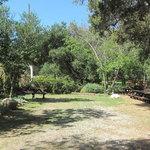 Kenney grove park