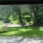 Riverhouse acres