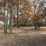 Rocky hock campground