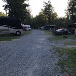 Greensboro koa