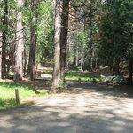 Landslide campground