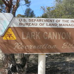 Lark canyon campground