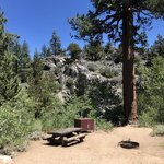 Leavitt Meadows Campground Reviews - Campendium