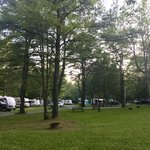 Holiday pines campground