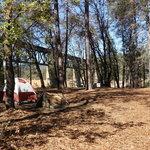 Lower salt creek shoreline campground