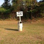 Swamp fox campground