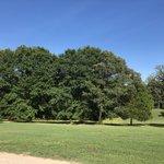 Ivy acres rv park