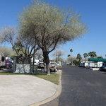 Alamo rose rv resort