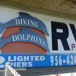 Diving dolphins rv park