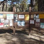 Memorial park campground