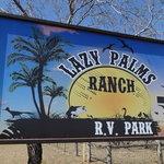 Lazy palm ranch