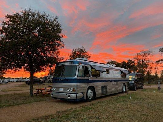 Texas wine country jellystone park camp resort
