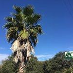 Shady oaks rv resort