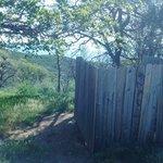 Miranda pines campground