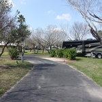 Bentsen palm village rv park