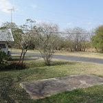 Oleander acres