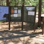 Moraine campground