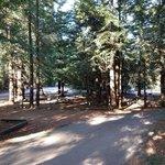 Mount madonna county park