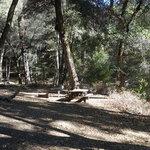 Nacimiento campground