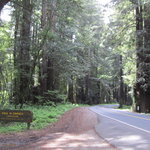 Paul m dimmick campground