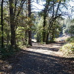 Nelson point campground