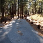 New shady rest campground