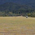 Oak flat campground ca