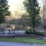 Fries new river trail rv park