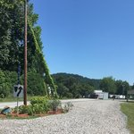 Five river campground