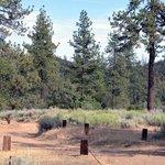 Reyes Creek Campground Reviews - Campendium