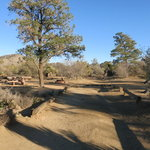 Pinyon flat campground