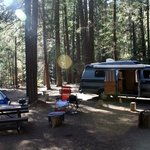 Pipi campground