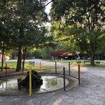 Door county jellystone park