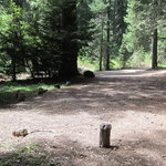 Daley creek campground