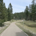 Fir group campground lincoln nf