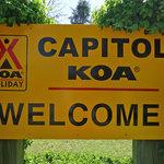 Capitol koa