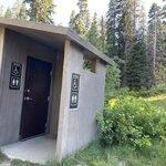 Quaking aspen campground