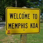 Memphis koa