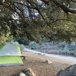 Reyes creek campground