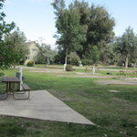 Livingston paradise valley koa