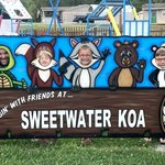 Sweetwater koa