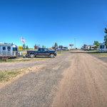 Laramie koa