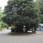 Trinidad rest area