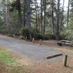 Woodside campground salt point state park