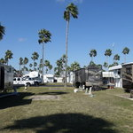 Palm shadows rv park
