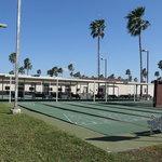Palm shadows rv park